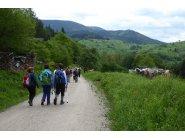 Wandergruppe Pfingsten 2016